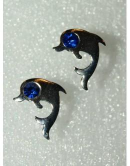 Dolfijn - H2690